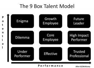 How-to Guide: 9-Box & Leadership Competency Model - Predictive Success