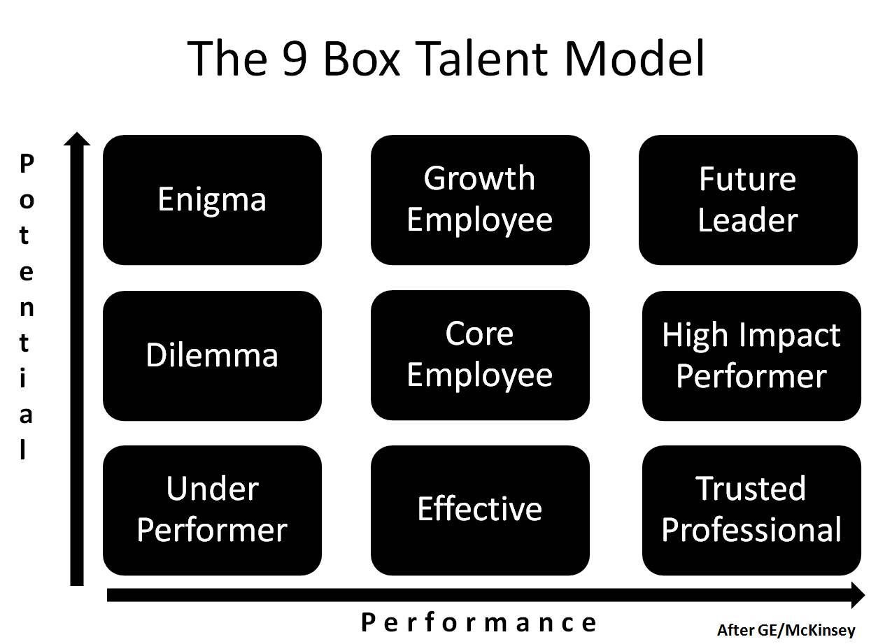 How-to Guide: 9-Box & Leadership Competency Model